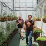 Roof garden @ Priority Zone 3