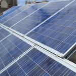 Solar panels @ Priority Zone