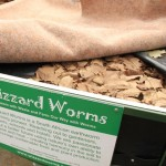 Worms at CCR Expo